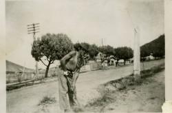 01347_Sabatino_Nicola_WA_1950s