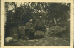 01348_Sabatino_Nicola_Q_Luigi_Vasto_Wine_1951
